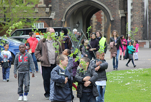 School children walk with Elm tree saplings