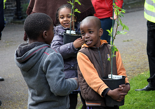 Children prepare to plant elm tree saplings