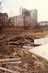 The Garden in the Autumn of 1986 Before Work