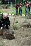 The Archbishop planting a Bottlebrush Tree at Archbishop Sumner C-of-E School, June 2008